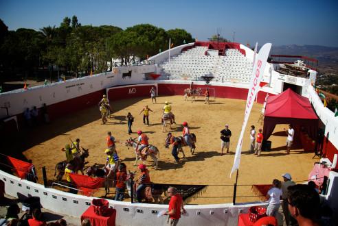 burro-polo-mijas-team-building-exploramas-2