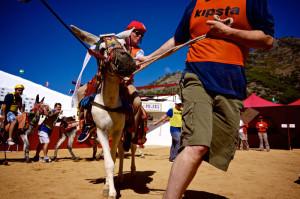 team-building-mijas-burro-polo-exploramas-8