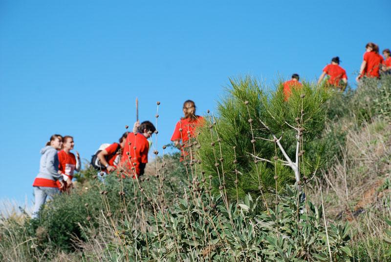 reforestacion rio fuengirola exploramas rsc